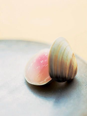 Japanese sweets, jelly of sakura-an (cherry blossom flavored bean paste) in clam shells | Kyoto, Japan 貝合せ