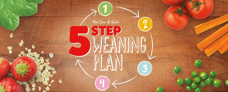 """5 step weaning plan  ** This is my favourite weaning chart..it starts with Vegetables..(higher nutrient content than grains, and have a lower chance of allergic response) in addition it doesnt favour sweet fruit flavours early on.  My other top tip would be to make """"Bone Broth""""..highly nutritious. See Wellnessmama website for more about the essential amino acids in bone broth and recipe ideas. https://wellnessmama.com/"""