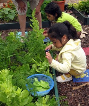Edible Gardens For Kids 101: Gardening Helps Empower Young People To Make  Positive And Creative
