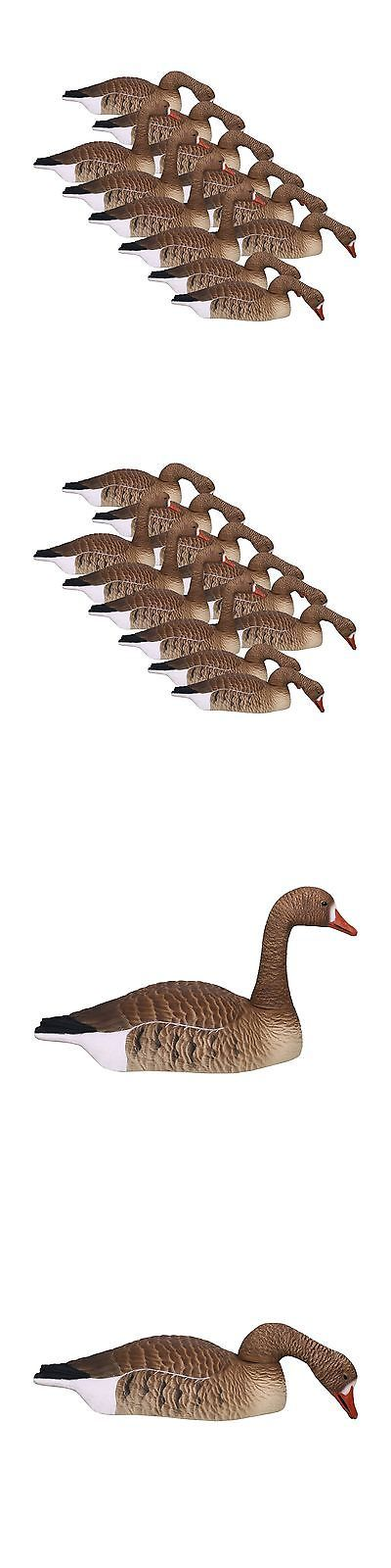 Decoys 36249: Hard Core Brands Economy Series Specklebelly Goose Touchdown Shell Decoys Mul... -> BUY IT NOW ONLY: $133 on eBay!