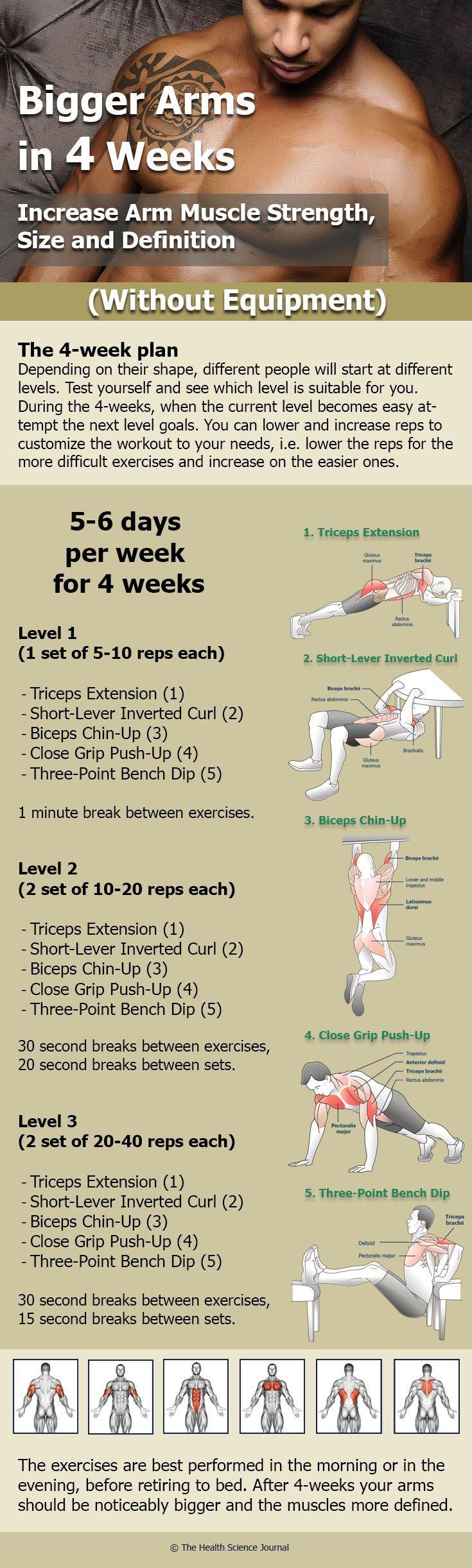 Armübungen ohne Ausrüstung: 5 Workouts für die Muskelmuskulatur, Größe und