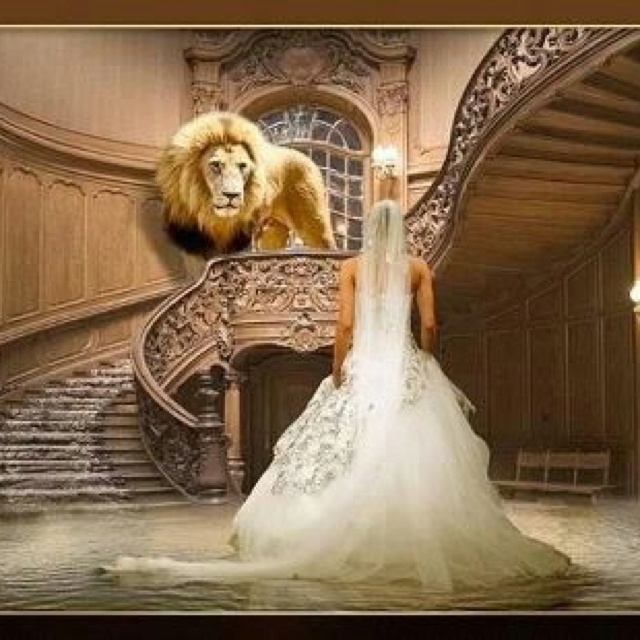 Lion of Judah and Bride of Christ.