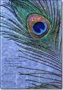 Tor Nørretranders bog 'Det generøse menneske' er en øjenåbner, og en af de vigtigste bøger, jeg har læst i mit liv. Der er kød på Nørretranders bøger, og jeg deler mange af hans livsanskuelser.    Læs den hvis du vil lære noget om det at være menneske