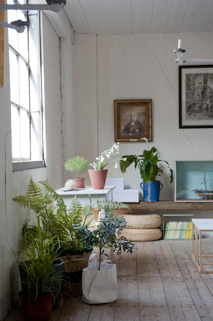 Plantes vertes dans le salon et cache-pots variés, poufs en osier, banc en bois brut... ambiance simple, lumineuse et naturelle