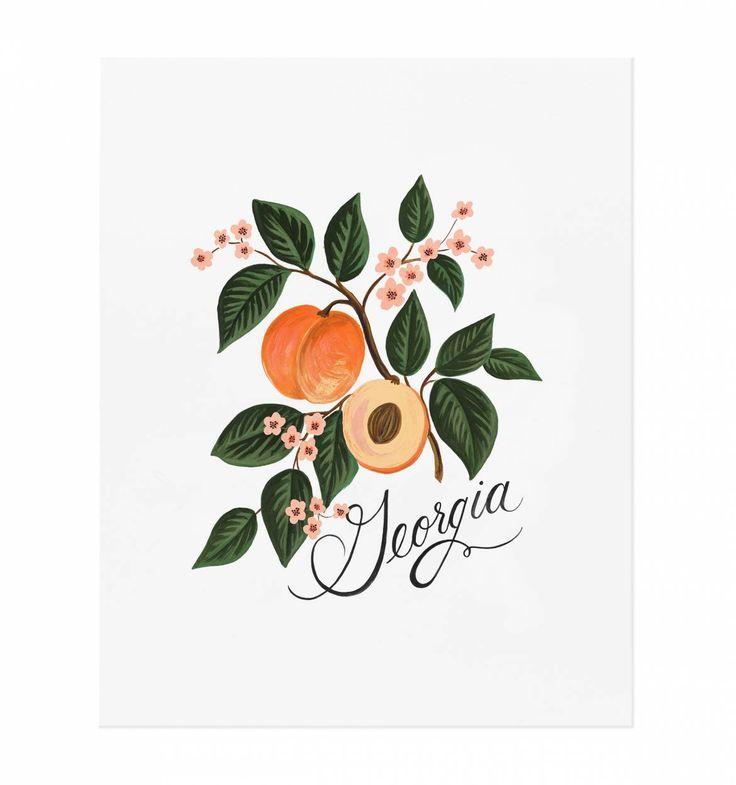 Georgia Peach Art Print by RIFLE PAPER Co. | Made in USA