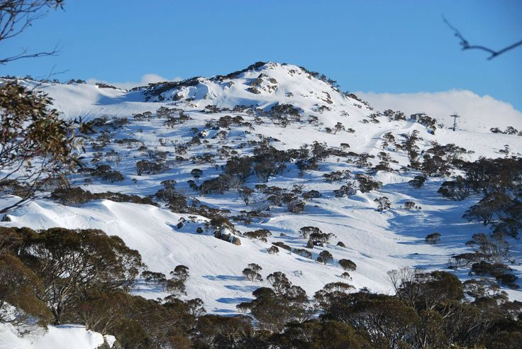 Snow covered mountain at Perisher, in the alpine region of New South Wales, Australia #snowaus