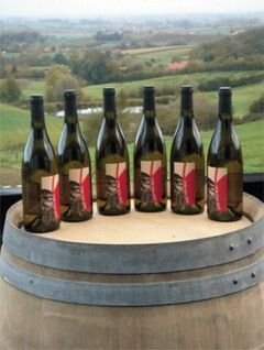 Wiscoutre, Belgische mousserende wijn van Entre Deux Monts