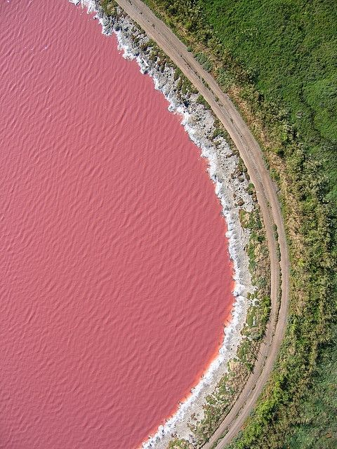 Lake Retba, Senegal |   Lake Retba or Lac Rose is located in the north of the Cap Vert peninsula of Senegal. It got its name due to the Dunaliella salina algae making its water look like strawberry milk shake. Pink color is clearly visible during the dry season. The lake is also famous for its high salt content, allowing people stay on the surface similar to the Dead Sea experience.