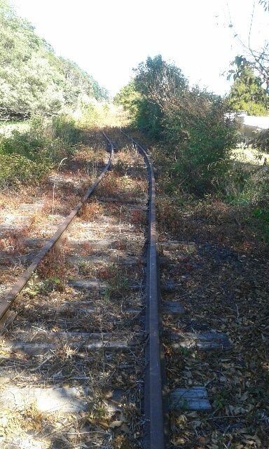 Preparing the abandoned Taneatua Rail Line in Whakatane New Zealand in preparation for an exciting new tourist venture with Awakeri Rail Adventures where participants drive their own rail vehicles through a tunnel, over bridges and past amazing farmland and native forest.