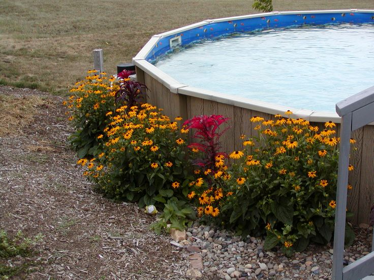 Above Ground Pool Landscaping Google Search Swimming