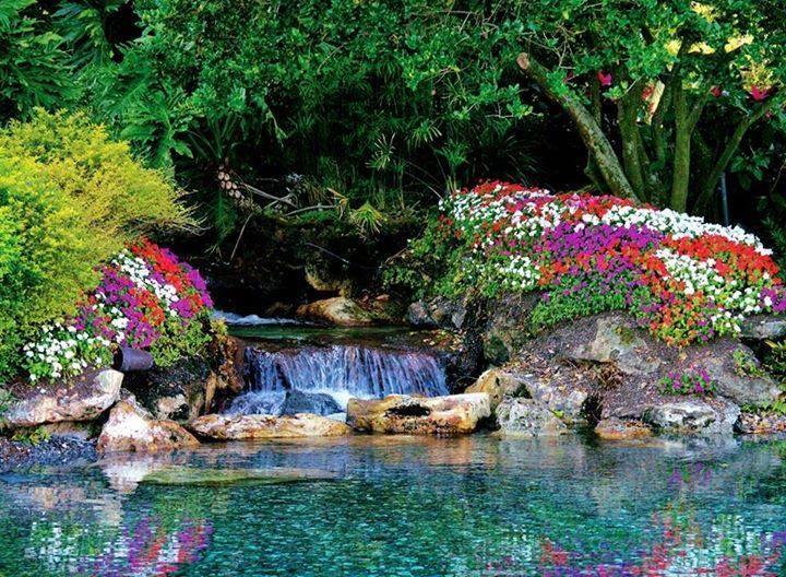Colorful Stream! | Beautiful Scenery | Pinterest