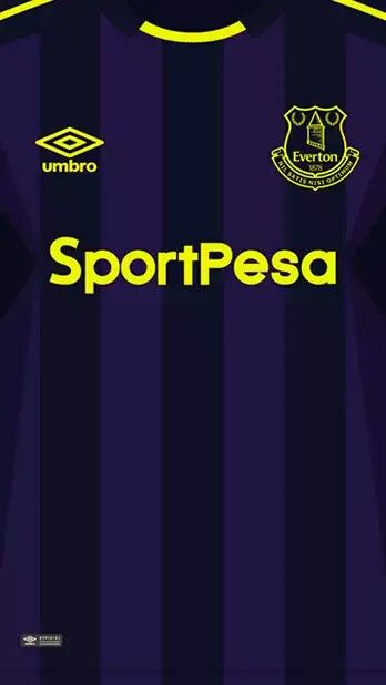 Everton 17-18 kit alternative
