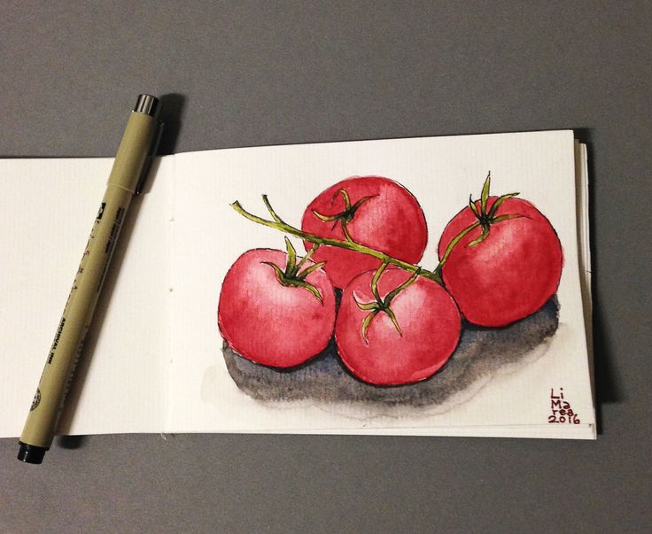 Tomatoes in watercolour