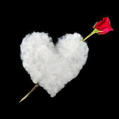 Les 12 meilleures images propos de noces de coton sur pinterest mariage tes et bouquet de coton - 9 ans de mariage noce de quoi ...