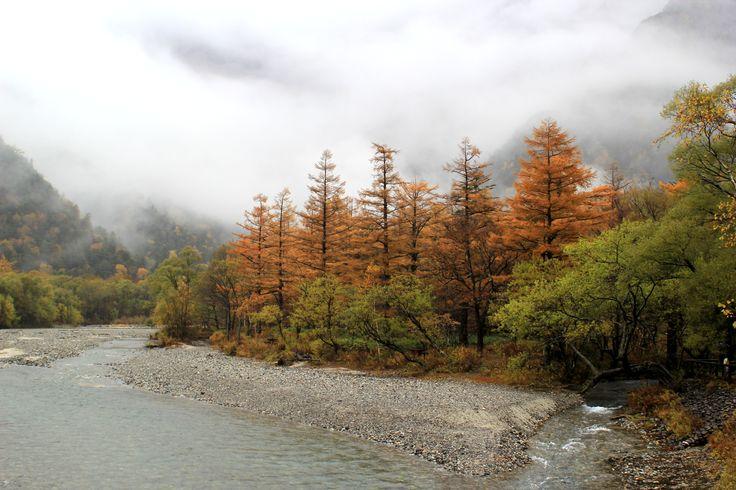 Autumn leaves of Kamikochi/上高地の紅葉