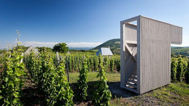 Gallery of Wine Terrace and Spa / Gereben Marián Architects - 10