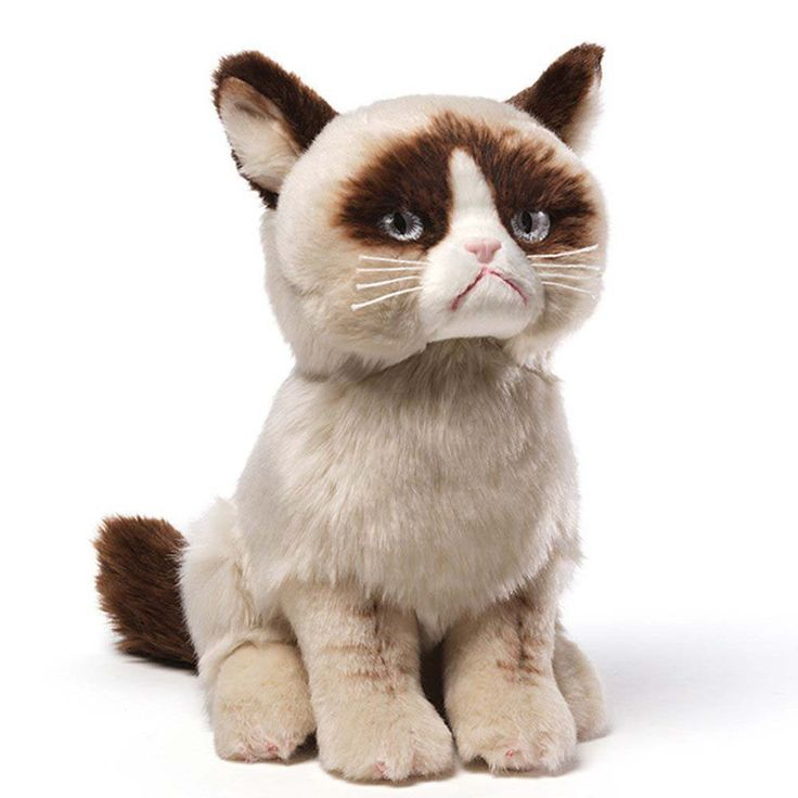 Realistic plush replica of Grumpy Cat with accurate grouchy expression and details Made from soft, huggable material that meets famous GUND quality standards Surface-washable construction for easy cle
