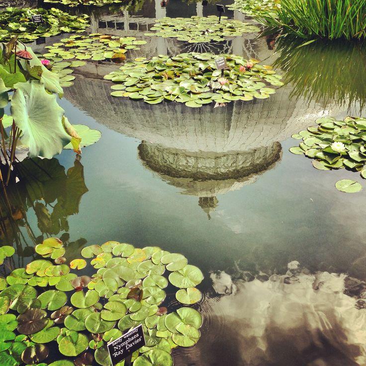 The New York Botanical Garden Greenmarket Botanical 400 x 300