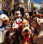 Disney theme park.
