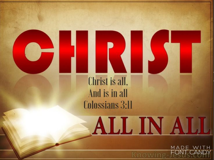 """Colossians 3:11 The Puritan Thomas Watson wrote, """"If a man has sunshine, he does not complain that he lacks the light of a candle. Has he not enough, who has 'the unsearchable riches of Christ?'"""" When you face problems, lean on Him, trust in Him, and know more of Him, than you ever have before. Make sure, above all else, that you have Christ and seek Christ, because when you have Him, you have it all."""""""