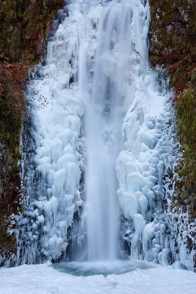 Spettacolari cascate di ghiaccio.  Sono le Multnomah Falls, Oregon.  La bellezza della natura.