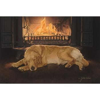 A feeling of warmth: Art Dogs, Art Johnweiss, John Weiss, Art Editing, Animal Art, Warmth, Artists John, Feelings, Golden Retriever