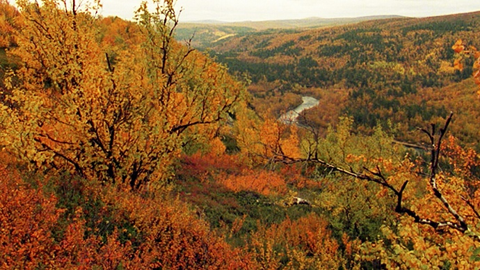 Video of Finnish autumn- so beautiful... Summer ends with an explosion of colour in the forests. This is the season known as 'ruska', when the autumnal reds, browns and yellows are especially beautiful on the fells of Lapland. September is also a popular time for trekking in northern Finland.