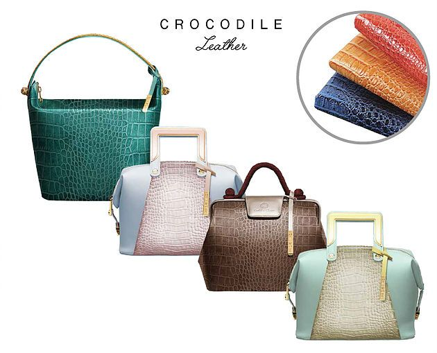 BLOG | NEWS Accessory Colletion Could & Clever