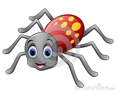 Venomous Spider Stock Photos, Images, & Pictures – (940 Images) - Page 7
