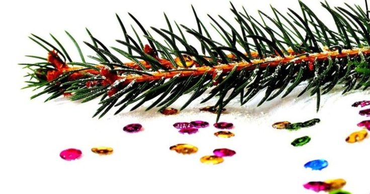 Si hay un acto que marca en sí el comienzo de las fiestas navideñas no es el encendido de las luces, ni la colocación de los escaparates, ni el catálogo de juguetes en el buzón. Lo que marca, de verda...