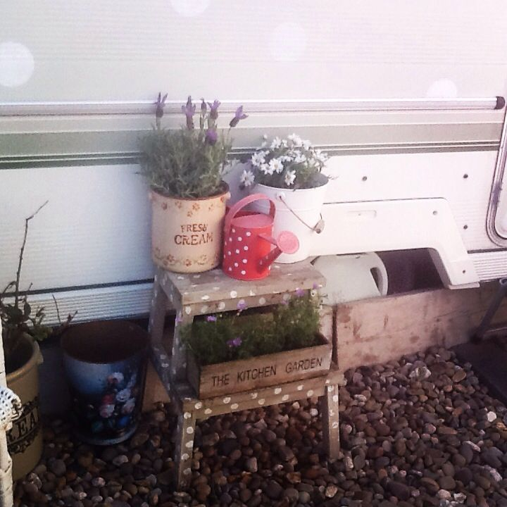 Sprucing up Dotty for spring