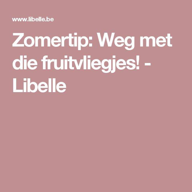 Zomertip: Weg met die fruitvliegjes! - Libelle