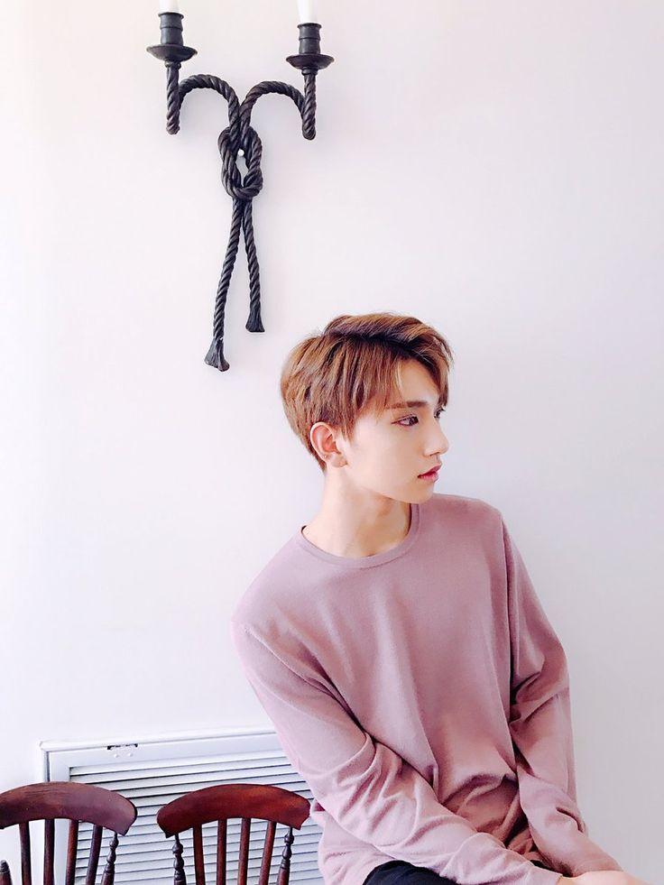 Joshua (Seventeen) @Bibiz61
