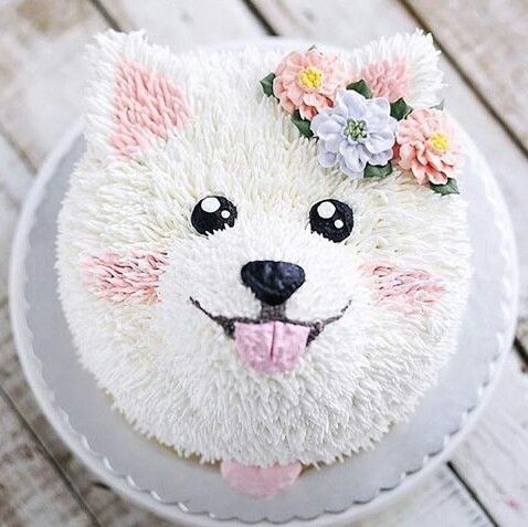 Amazing small dog cake. White and pink with flowers. It's too cute to eat ;) - Tap the pin for the most adorable pawtastic fur baby apparel! You'll love the dog clothes and cat clothes! <3