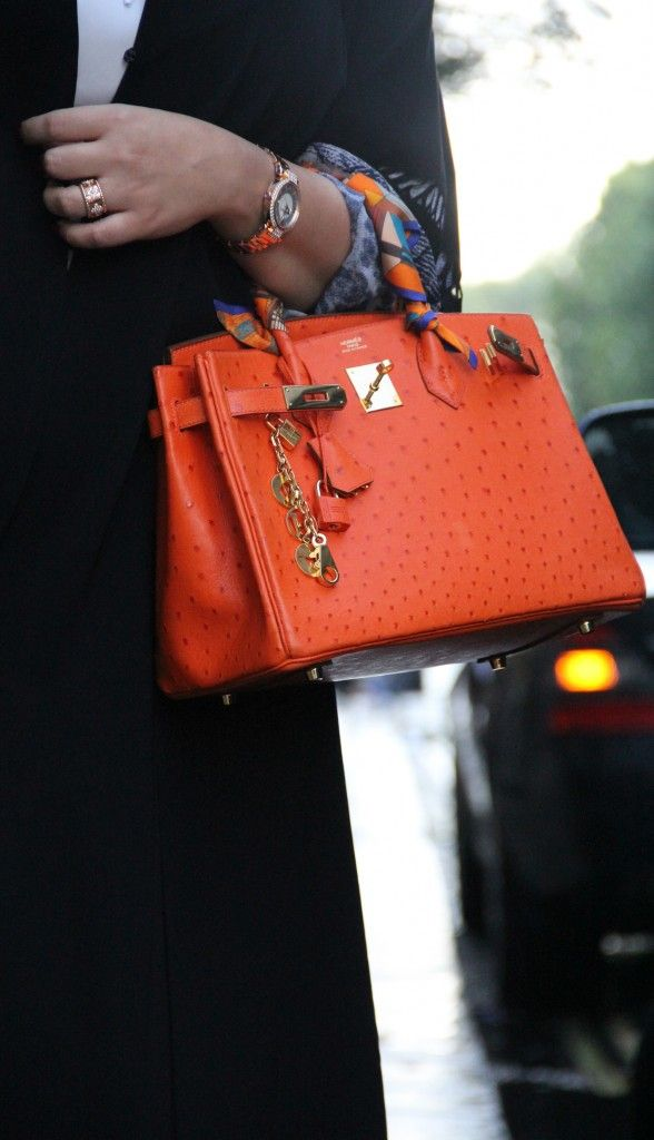 1000+ images about Hermes twilly on Pinterest