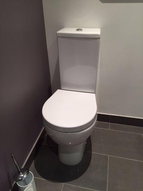 37 best Toilet Seats images on Pinterest | Toilet seats, Toilets ...
