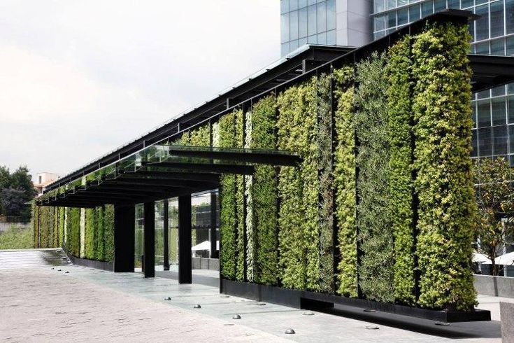 Park plaza m xico d f verde vertical jard n vertical for Jardines verticales mexico