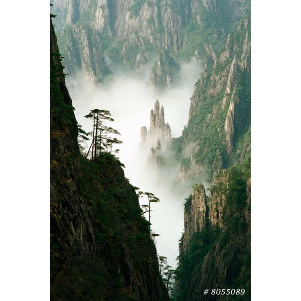 Nature Landscape fine art photography Buddha's Palm, Yellow Mountain... ($10) ❤ liked on Polyvore featuring home, home decor, buddha home decor, yellow home decor and yellow home accessories