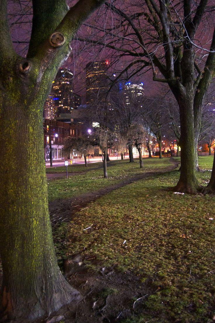Moss Park in Toronto