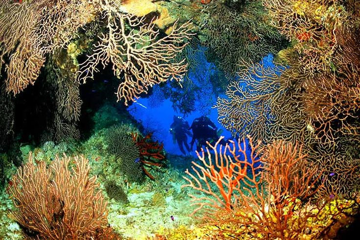 A multi-coloured grotto at Grand Cayman's Ghost Mountain. Image courtesy of the Cayman Islands Department of Tourism / Lonely Planet.