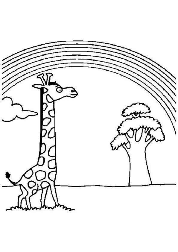 real giraffe coloring pages - photo#41