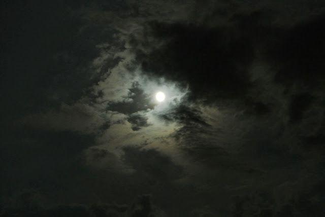 the biggest moon of August! Perrrrrrrrfect!