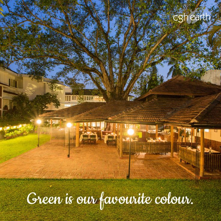 Casino Hotel Kochi takes pride in our green methods. Something you will appreciate as you dine at our Fort Cochin restaurant, under a banyan tree and lush green lawns.