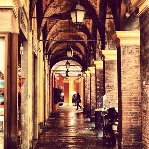 Módena, región de Emilia Romana, es la cuna de origen y verdadera patria del Lambrusco.