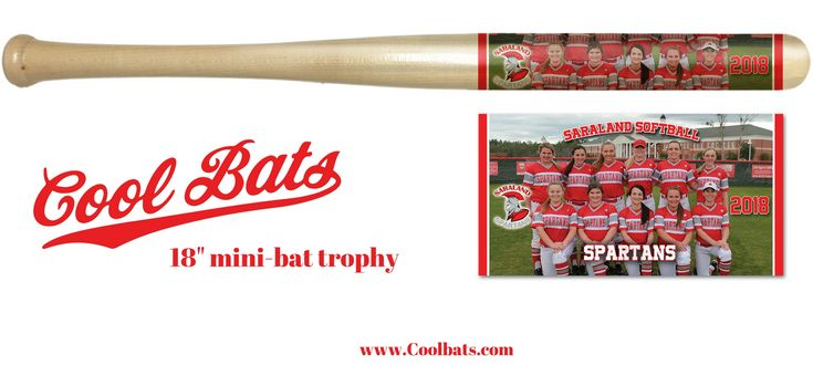 Baseball trophy! This is the kind of baseball trophy that will stand out from the rest. Don't settle for the same old boring trophy. This is the only trophy that combines the team photo, roster, park details and so much more all on an 18 inch mini-bat for the cost of a traditional trophy.