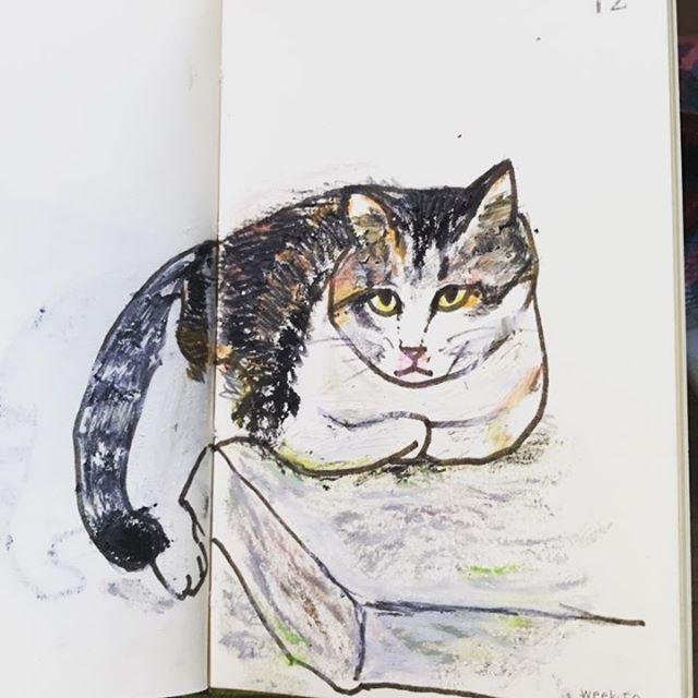 anthony0174#市場のネコ#一日一絵 #イラスト #手帳#モレスキン#ねこ#ネコ#ネコスタグラム #cat#catsofinstagram #cat  こにゃにゃちは💕 サクラクレパス 鉛筆 サインペン2017/10/28 12:35:28