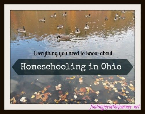 Homeschool in Ohio? Then you MUST read this post!