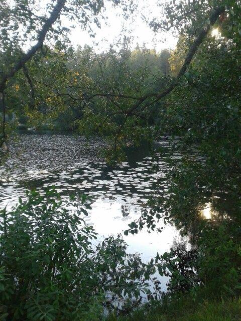 Finnish nature is wonderful!