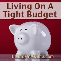 Mom raised 2 teens on $500 a month, we understand when you say you have a tight #budget! Here are some ideas about how to make living on a tight #budget easier. Click here to get budget tips you can start using NOW! http://www.livingonadime.com/debt-free-living-dealing-tight-budget/