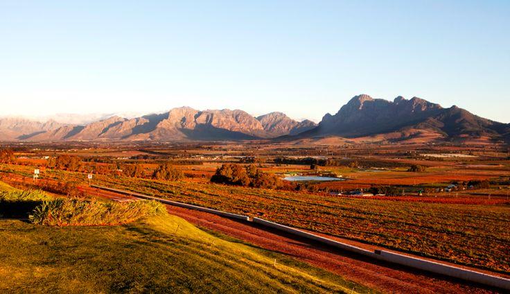 Autumn in Paarl